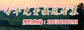 郑州站免费接送看墓