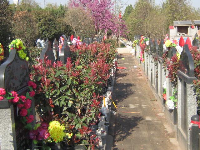 青龙岗陵园墓区
