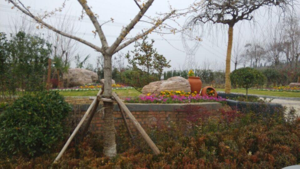 郑州公墓御泉陵园