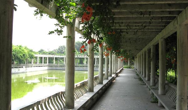 云鹤陵园长廊风景