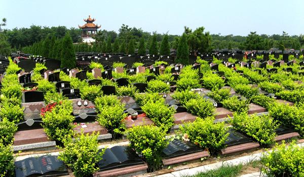 云鹤陵园墓群